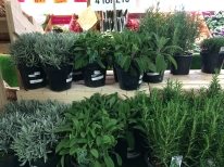 Farm Shop Herbs 1 litre