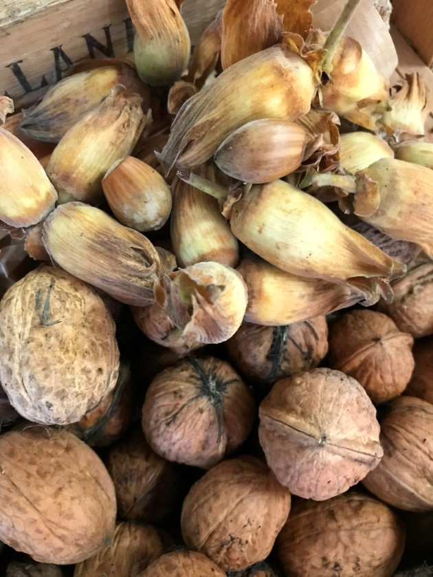 Wet Walnuts and Cobnuts
